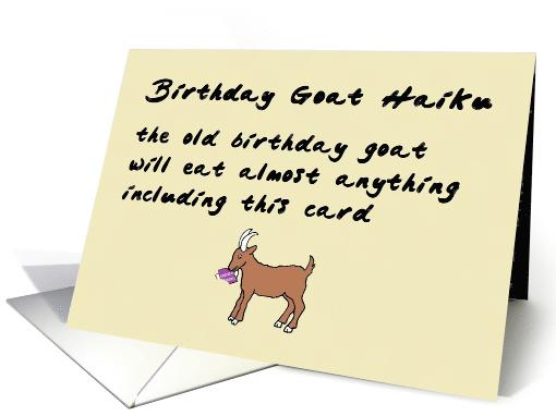 Birthday Goat Haiku A Funny Happy Birthday Poem Card
