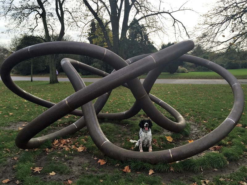 """Three Perpetual Chords"" - Dulwich Park - Sally's dog adventures"