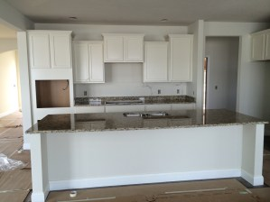House Progress 11.29.2014 (30)