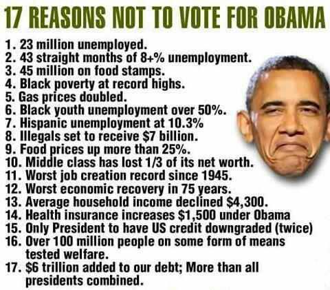 17-reasons-not-to-vote-for-Obama