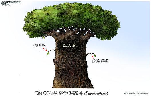 Obamas-executive-branch