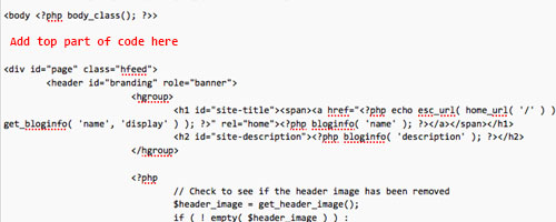 Paste the Clicktale top code into header.php