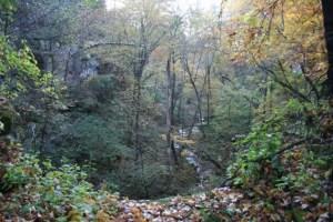 Photo taken on property adjacent to Tiller/Zavoral proposed mine site