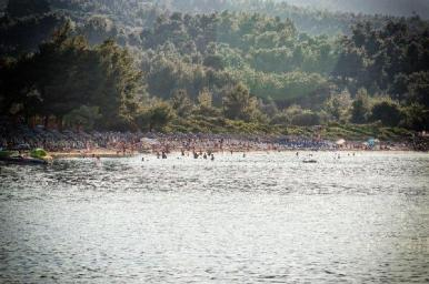 forest_and_sea_halkidiki_thumb