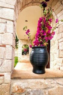 house_flowers_halkidiki_thumb