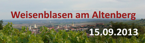 Weisenblasen-2013