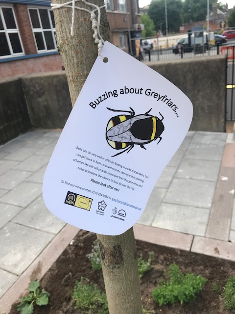 Encouraging City Wildlife with The Greening Greyfriars Project