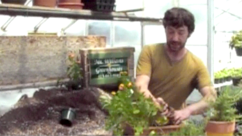 Chad Therrien of Mt. Williams Greenhouses describes how beautiful and flavorful herb gardens can be; video capture by Jason Velazquez