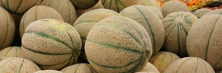 """""""Rock Melons,"""" by Toby Hudson (Own work) [CC BY-SA 3.0 or GFDL], via Wikimedia Commons"""