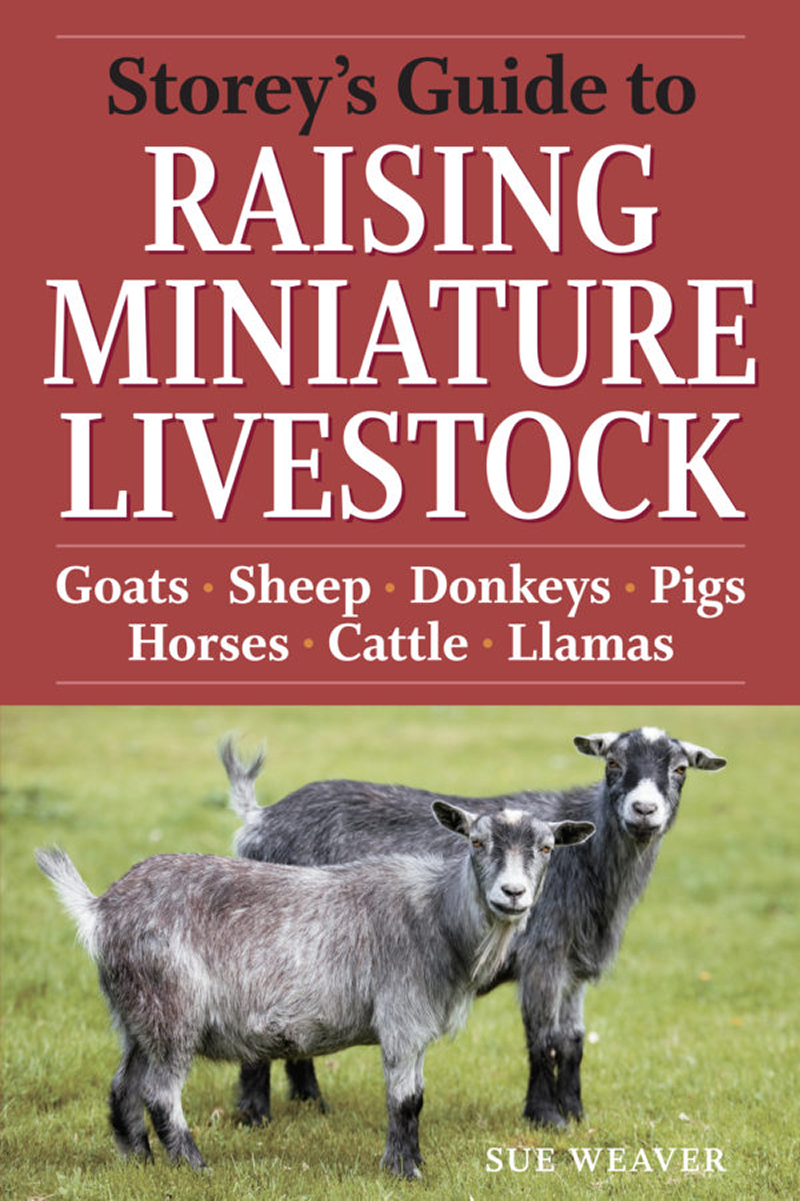 Storey's Guide to Raising Miniature Livestock • The Greylock Glass