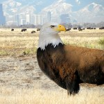 "James Kennedy asks whether there's room for an economic hybrid in America: mashup of ""Bald Eagle,"" photo by Saffron Blaze [CC BY-SA 3.0 (https://creativecommons.org/licenses/by-sa/3.0)], from Wikimedia Commons"