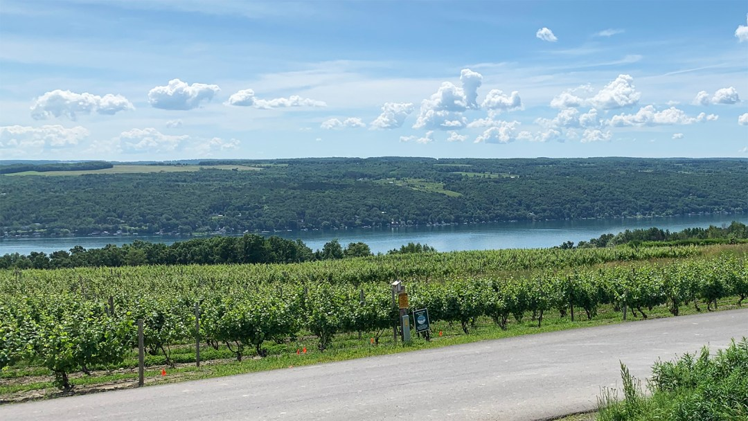 "Dr. Konstantin Frank vineyards overlooking Keuka Lake. Frank ignited the ""Vinifera Revolution"" in the FLX; photo by Nancy Koziol."
