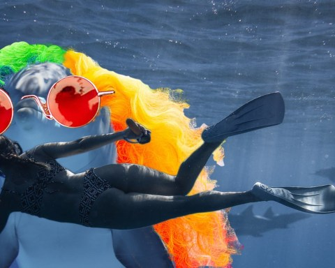 photo of Dolphin underwater altered to appear to be wearing a rainbow wig and hippie sunglasses. A woman in snorkel gear swims underwater in the foreground.