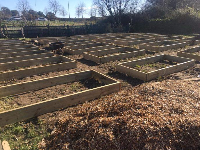 Greystones Garden Dirty Double Dozen