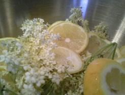 Hollerblüten und Zitronenscheiben in einer Schüssel