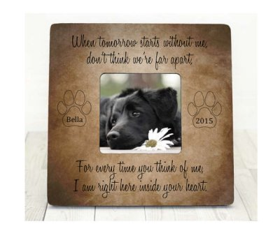 10 Best Pet Loss Sympathy Gift Ideas