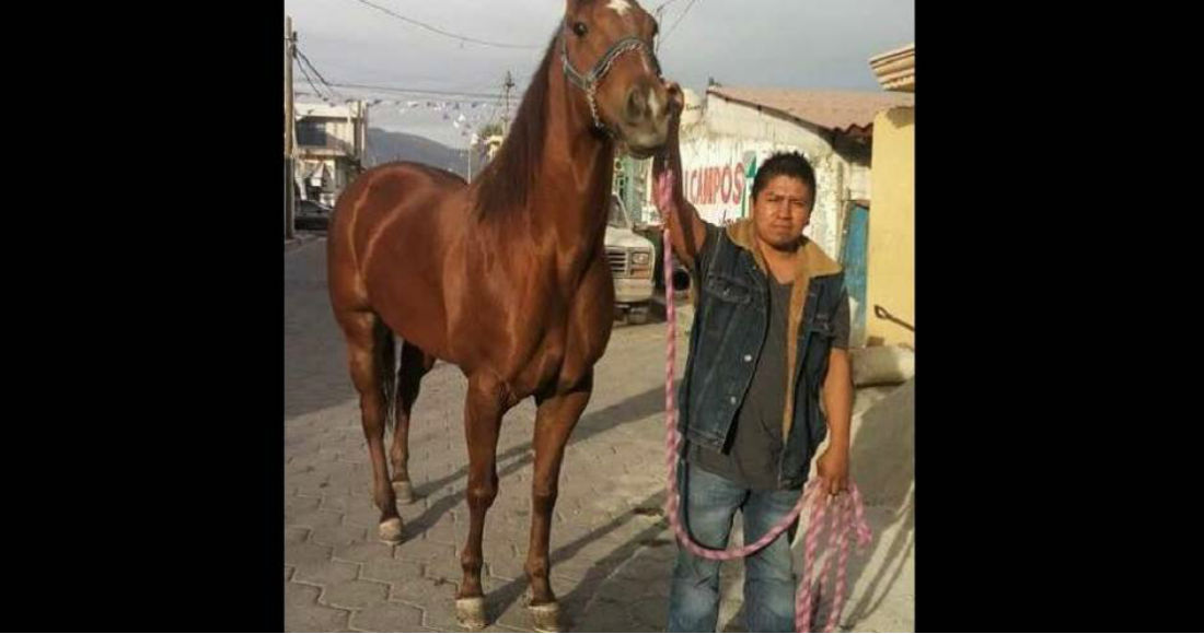 Sergio Rivera, activista indígena y opositor de hidroeléctrica, es reportado como desaparecido en Puebla