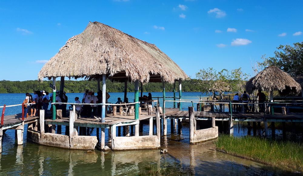 "El ""área natural protegida"" de Dziuché, historia de un despojo de larga planificación (Quintana Roo)"