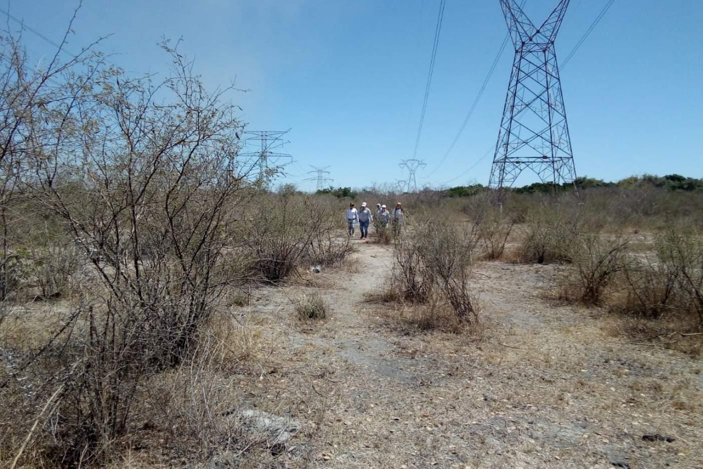 Rastreadoras hallan nueva fosa clandestina en Mazatlán (Sinaloa)