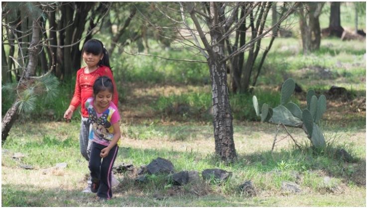 El terror alcanzó la niñez en México: tienen 10 años y son obligadas a convertirse en madres