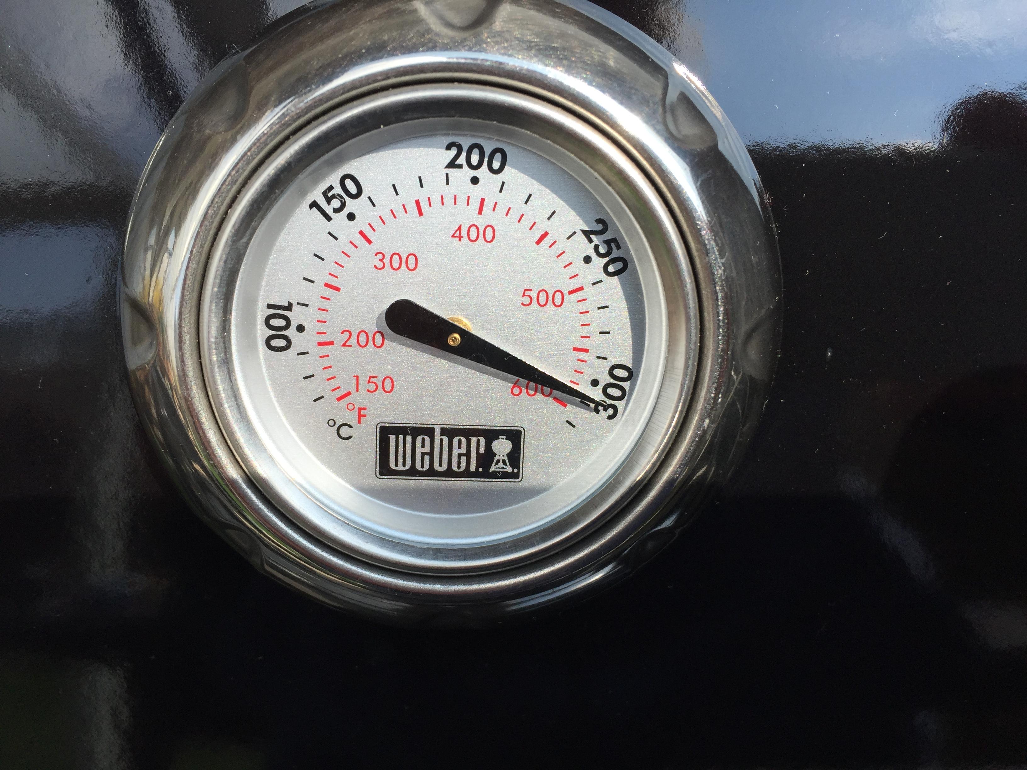 Weber Elektrogrill Mit Thermometer : Webergrill welcher ist der beste webergrill grillfleisch