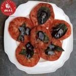 Grilled Panzanella Crostini