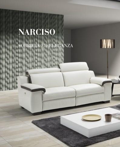 scheda_narciso-0