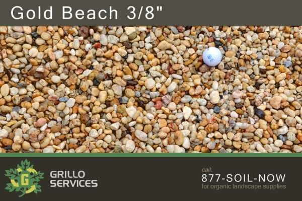 """Gold Beach 3/8"""""""