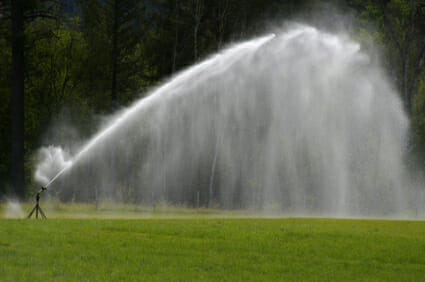Sprinkler, Grass, Watering, Irrigation