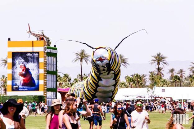 Coachella-4109.jpg