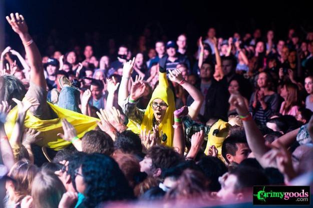 concert crowd surfing photos