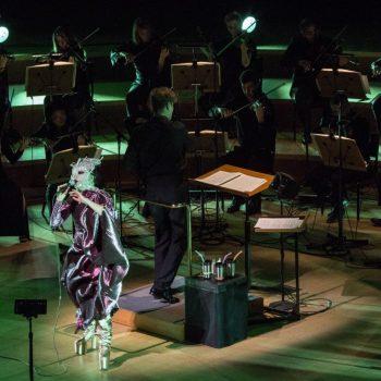 Björk at Walt Disney Concert Hall -- Photo: Santiago Felipe