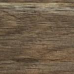 610 Acorn Oak