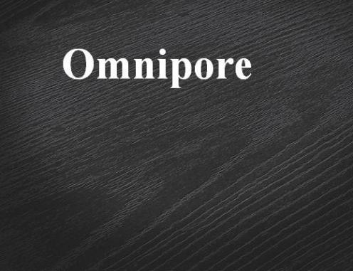 Profi-Surfaces-Omnipore-520x400px