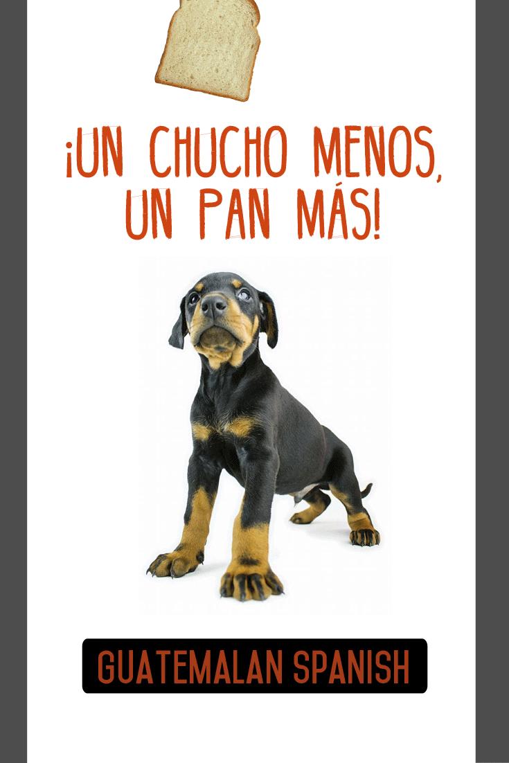 Guatemalan sayings: Un chucho menos, un pan más.