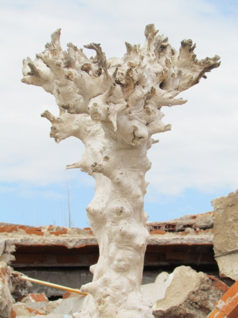Salty tree, Epecuen
