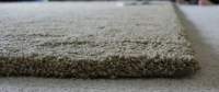 Tigressa SoftStyle Carpet from Carpet One + Giveaway ...