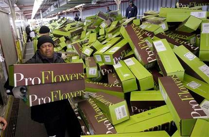 A snapshot of ProFlowers shipping insanity.