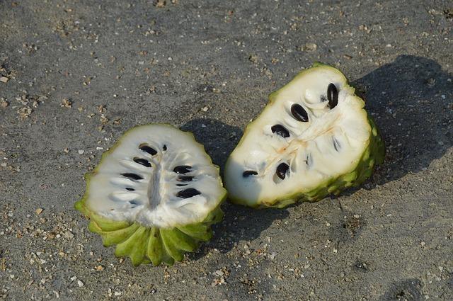 çerimoya tropikal meyve