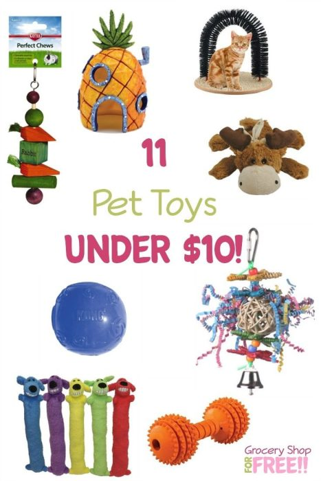 11 Pet Toys Under $10!