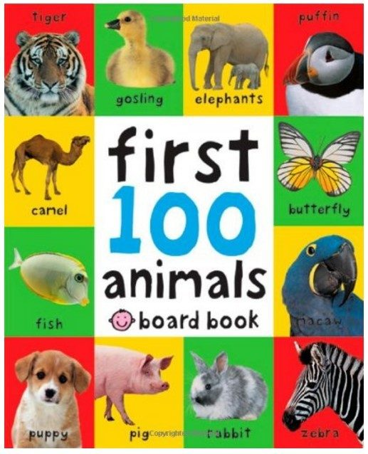 First 100 Animals Board Book Just $3.36!