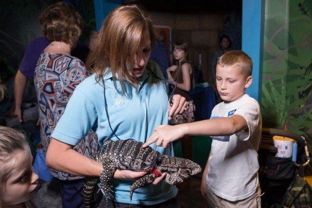 SEA LIFE Grapevine Aquarium's New Rain Forest Adventure!