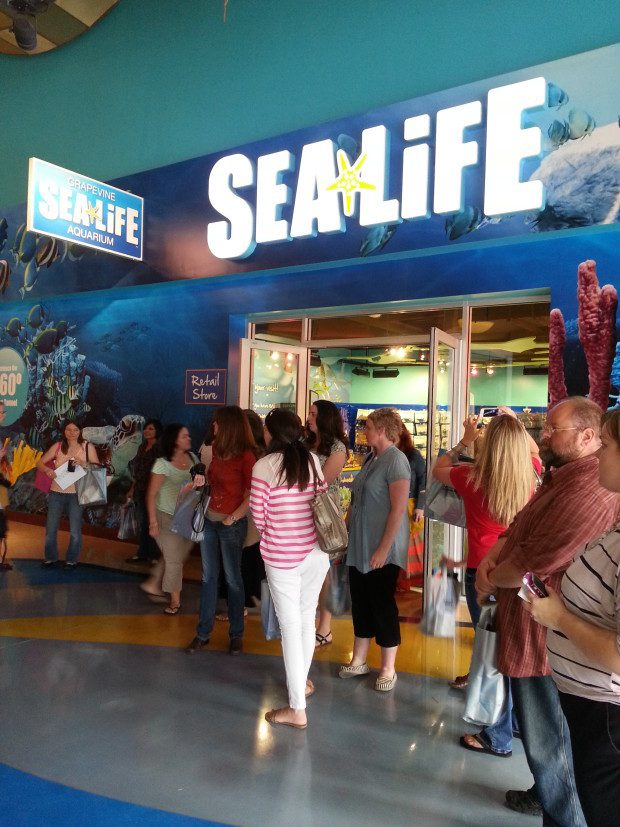 Sea Life Grapevine Announces Opening Of New Rain Forest Adventure Addition!