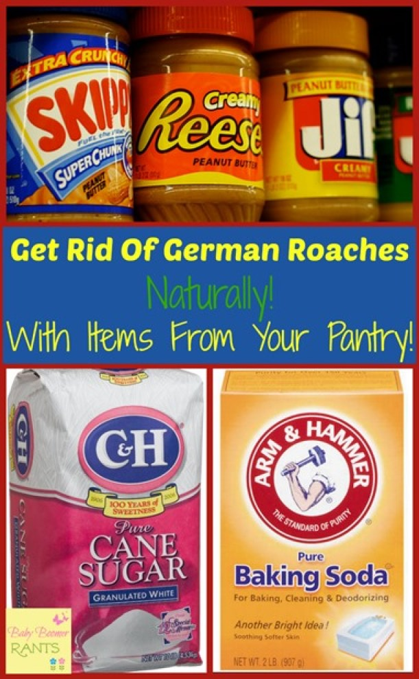 Here's a frugal and safe, natural home remedy for getting rid of German Roaches.