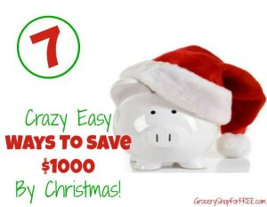 7 Crazy Easy Ways To Save $1000 By Christmas!