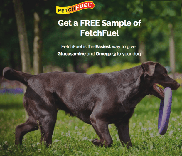 FREE FetchFuel Sample For Your Dog!