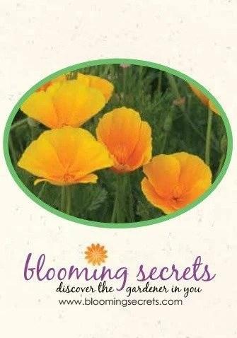 FREE Poppy Seeds!