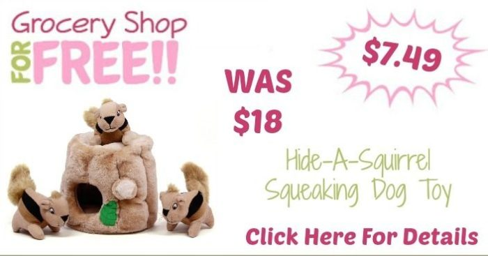 Hide-A-Squirrel Squeaking Dog Toy Only $7.49! (Reg. $18!)