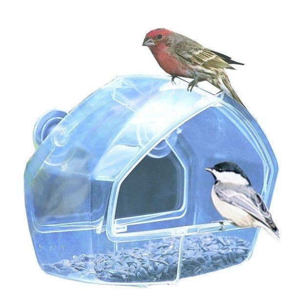 Birdscapes Clear Window Feeder Just $7.74! (Reg. $13.99!)