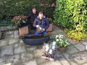 Plantenlijst Robs Grote Tuinverbouwing 101216